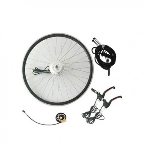 Q100 36V350W Rear E-Bike Whole Kit