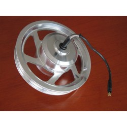 "Q8512 200W-250W 12"" Front-Driving Brushless Motor with 12"" Rim"